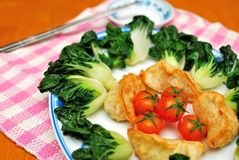 Chinese dumplings and vegetables Royalty Free Stock Image