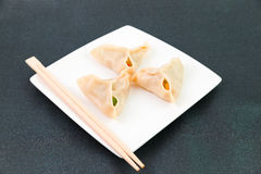 Chinese dumplings Royalty Free Stock Photo