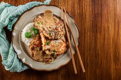 Chinese egg fu yung omelette Royalty Free Stock Image