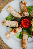 Chinese egg rolls Stock Images