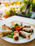 Chinese egg rolls Royalty Free Stock Images