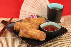 Chinese Egg Rolls & Tea 1 Royalty Free Stock Photography