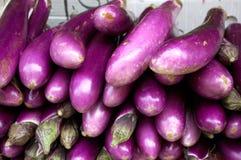 Chinese Eggplant Stock Image