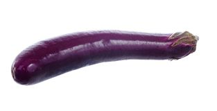 Chinese eggplant isolated on white background. Royalty Free Stock Photography