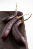 Chinese Eggplant purple. Chinese eggplant or purple egg plant, used for a healthy dish or alternative to regular eggplant Stock Images