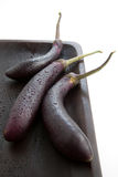 Chinese Eggplant purple. Chinese eggplant or purple egg plant, used for a healthy dish or alternative to regular eggplant Royalty Free Stock Photography