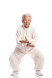Chinese Elderly Woman Performing Tai Chi Royalty Free Stock Photography