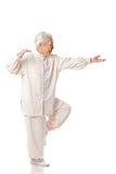 Chinese Elderly Woman Performing Tai Chi Royalty Free Stock Images