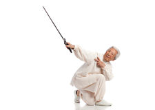 Chinese Elderly Woman Performing Tai Chi Royalty Free Stock Image