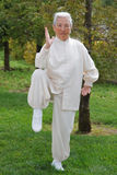 Chinese Elderly Woman Performing Taichi Outdoor Royalty Free Stock Photography