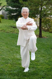 Chinese Elderly Woman Performing Taichi Outdoor. Posture stock images