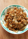 Chinese entree. Preserved vegetable stir fried with pork Stock Image