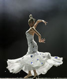 Chinese famous dancer Yang Liping Stock Photography