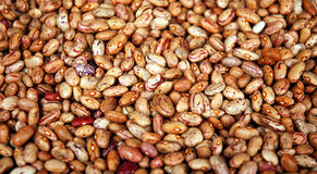 Chinese farm produce. Kidney bean in Sichuan produce market ,west of China Royalty Free Stock Photos