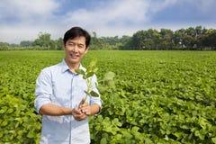 Chinese farmer holding sapling Stock Photos