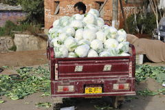Chinese Farmer Selling Vegetables Royalty Free Stock Images
