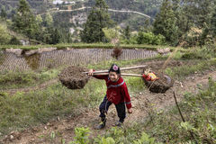 Chinese farmer woman carrying a heavy load on their shoulders. Stock Photography