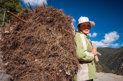 Chinese farmer Royalty Free Stock Image