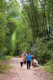 Chinese farmers walking along bamboo forest Stock Photo