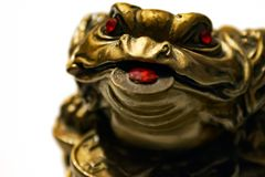 Chinese Feng Shui Frog with coin, a symbol of money. Chinese frog with coins, a symbol of money and wealth, close up, shallow of depth, soft focus stock photography