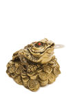 Chinese Feng Shui Frog with coins. Isolated over white stock photos