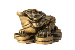 Chinese Feng Shui Frog Royalty Free Stock Image