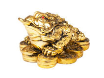 Chinese Feng Shui Frog. With coins, symbol of money and wealth stock photography