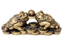 Chinese feng shui frogs Royalty Free Stock Image
