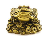 Chinese Feng Shui lucky money frog for good luck Stock Photos