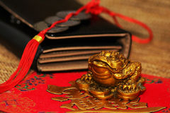 Chinese Feng Shui lucky money frog Stock Photography