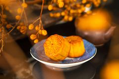 Chinese, festival, reunion, Mid-Autumn Festival, moon appreciation, moon cake,. Chinese festival, the family reunited for the Mid-Autumn Festival, enjoying moon stock images