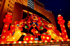 Chinese festival lantern. The festival lanterns are exhibited  during the Chinese New Year(Spring Festival) and Lantern Festival Stock Images