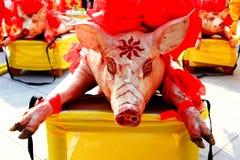 Chinese Festival:sacrifice pig stock photos