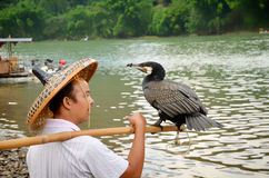 Chinese fisherman speaking with his fish eagle (ossifrage). Shoot in China, GuiLin. A elder fisherman with his fish eagle on river bank, waiting for fishing Royalty Free Stock Photo