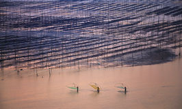 Chinese Fishermen,Fujian�Xiapu� Stock Photography