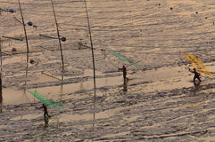 Chinese Fishermen,Fujian,Xiapu Stock Photography