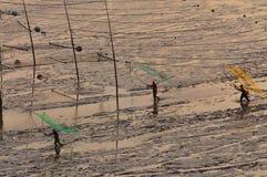 Chinese Fishermen,Fujian,Xiapu Stock Photography