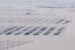 Chinese fishing village. A fishing village in south china Stock Images
