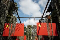 Chinese flag and plant under blue Sky.  Royalty Free Stock Photos