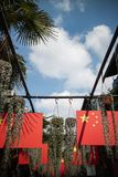 Chinese flag and plant under blue Sky.  Stock Photography