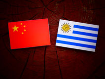 Chinese flag with Uruguaian flag on a tree stump isolated. Chinese flag with Uruguaian flag on a tree stump Royalty Free Stock Photos