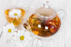 Chinese flowering tea with camomile Stock Photography
