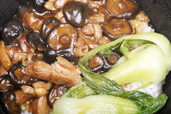 Chinese food. Close-up of attractive Chinese food Stir-fried fresh mushrooms with gre.en vegetables and rice Royalty Free Stock Photo