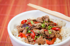 Chinese food. With beef and coriander. Rise on the side and paprika making it very delicious Stock Photography