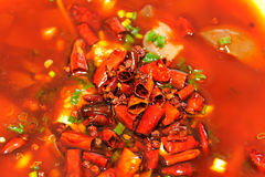 Chinese food capsicum oil Stock Image