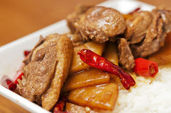 Chinese  food-Duck meat and tender ginger Stock Image