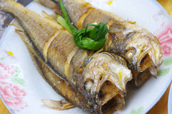 Chinese food fish Royalty Free Stock Photos