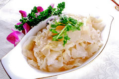 Chinese food- jellyfish in vinegar Royalty Free Stock Photos