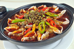 Chinese food. Pepper boiled conch Stock Image
