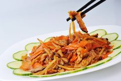 Chinese food on plate close up Royalty Free Stock Photo